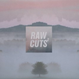 V.A. - Chillhop Raw Cuts Volume 2