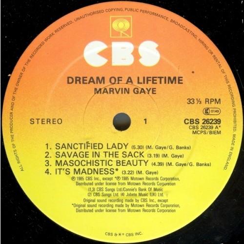 Marvin gaye dream of a lifetime brani