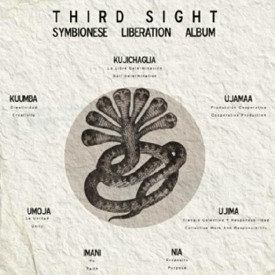 Third Sight - Symbionese Liberation Album