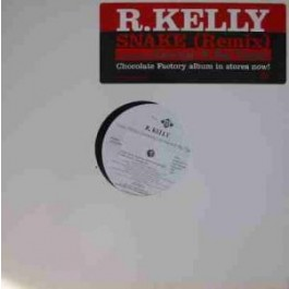 R. Kelly Featuring Cam'ron & Big Tigger - Snake (Remix)