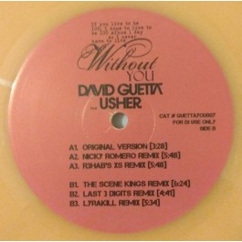 David Guetta - Without You (Remixes)
