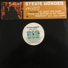 Stevie Wonder - A Time 2 Love