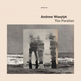 Andrew Wasylyk - The Paralian