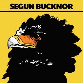 Segun Bucknor - Segun Bucknor