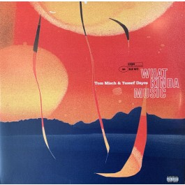 Tom Misch - What Kinda Music