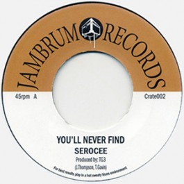 Serocee - You'll Never Find