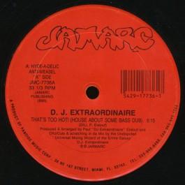 DJ Extraordinaire - That's Too Hot