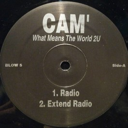 Cam'ron - What Means The World 2U