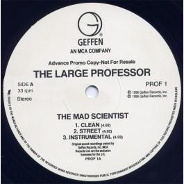 Large Professor - The Mad Scientist