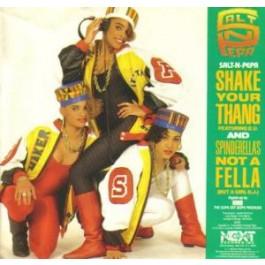 Salt-N-Pepa - Shake Your Thang