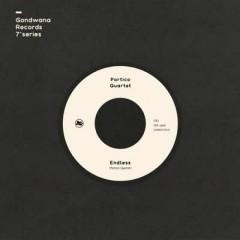 Portico Quartet - Endless / Undercurrent