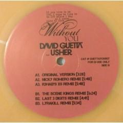David Guetta - Without You (Remixes)