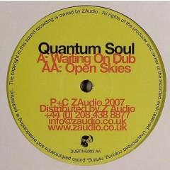 Quantum Soul - Waiting On Dub / Open Skies