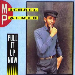Michael Palmer - Pull It Up Now