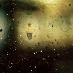 Robert Hampson - Suspended Cadences