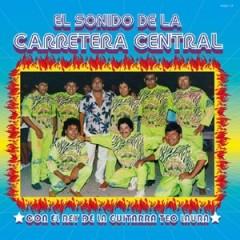 Various - El Sonido De La Carretera Central