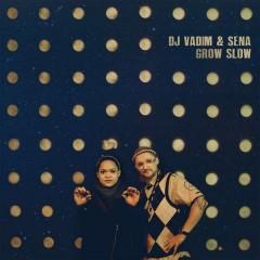 DJ Vadim - Grow Slow