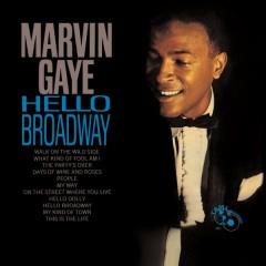 Marvin Gaye - Hello Broadway