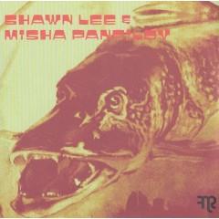 Shawn Lee - Mic Wallace