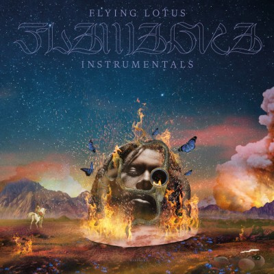 Flying Lotus - Flamagara Instrumentals (LTD. Double LP incl. Slipmat)