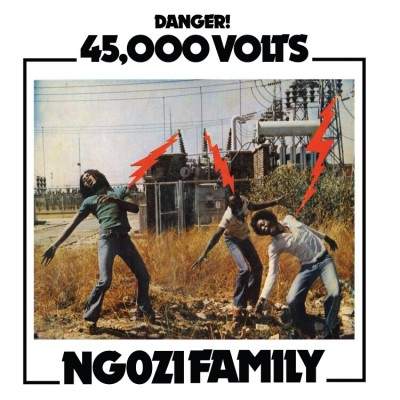 Ngozi Family - 45,000 Volts