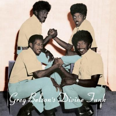 Various - Greg Belson's Divine Funk