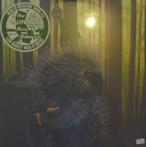 Madlib - Low Budget High Fi Music (Madlib Medicine Show – No. 11)