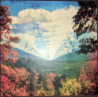 Tame Impala - Innerspeaker (2010 ➝ 2020) 10th Anniversary Edition