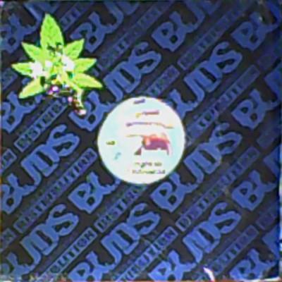 Unknown Artist - Disc Jockey's Delight