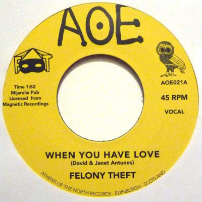 Felony Theft - When You Have Love / Run For Cover