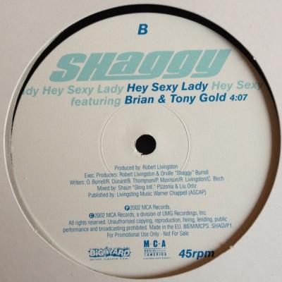 Shaggy - Hey Sexy Lady