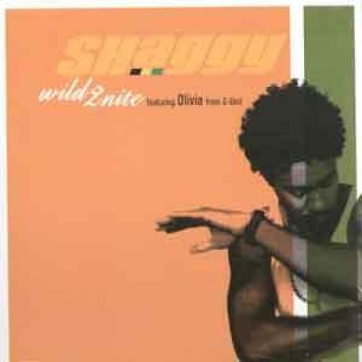 Shaggy - Wild 2nite