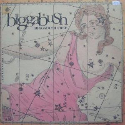 Bigga Bush - Bigga Bush Free