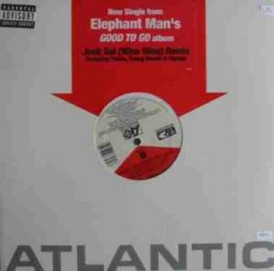 Elephant Man - Jook Gal (Remixes)