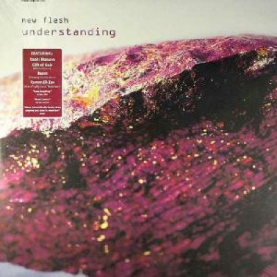 New Flesh - Understanding