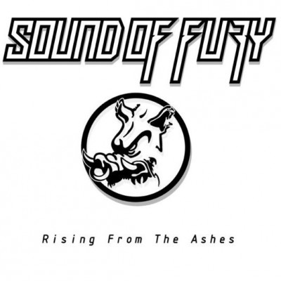 Sound Of Fury - Rising From The Ashes