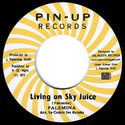 Palemina - Living On Sky Juice