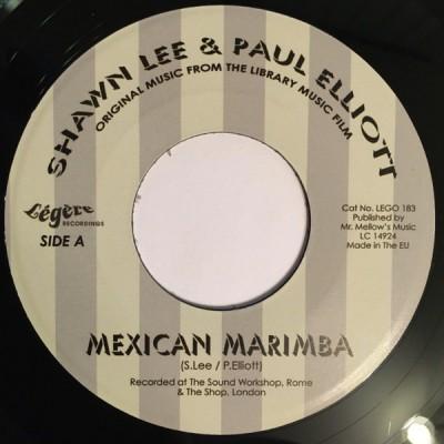 Shawn Lee & Paul Elliott - Mexican Marimba