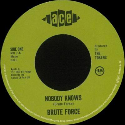 Brute Force - King Of Fuh / Nobody Knows