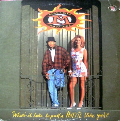 Mellow Man Ace - What's It Take To Pull A Hottie (Like You)?