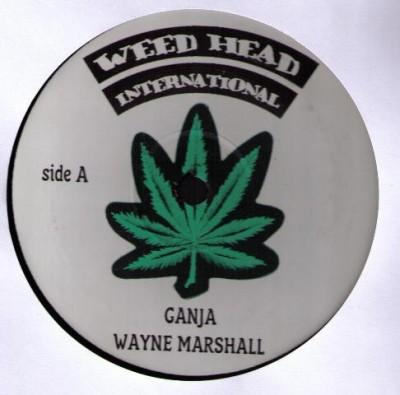 Wayne Marshall / Unknown Artist - Ganja / Weed Anthem