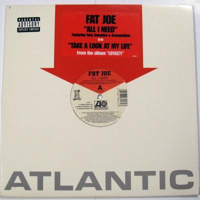 Fat Joe - All I Need / Take A Look At My Life