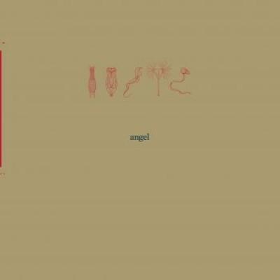 Angel - 26000