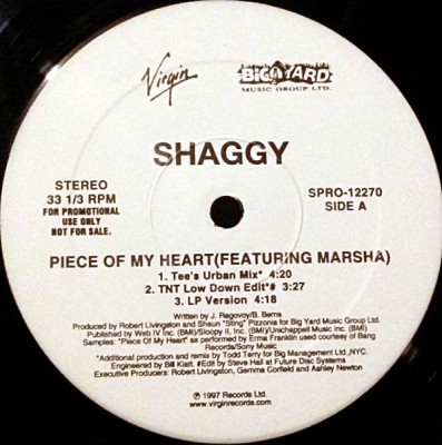 Shaggy - Piece Of My Heart (Todd Terry Remixes)