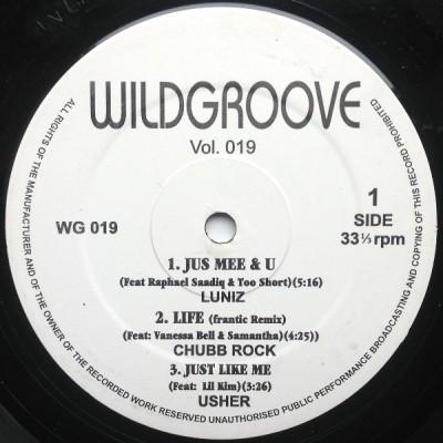 Various - Wildgroove Vol. 19