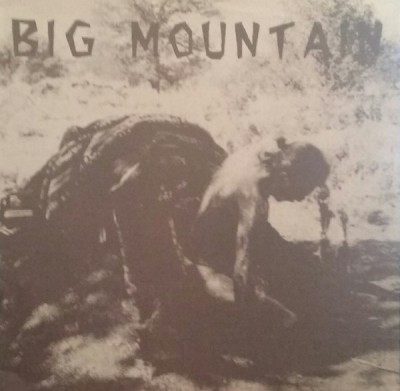Various - Big Mountain - Benefit Compilation