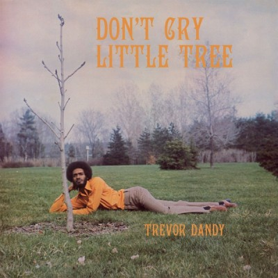 Trevor Dandy - Don't Cry Little Tree