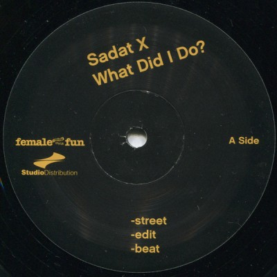 Sadat X - What Did I Do? / The Great Diamond D