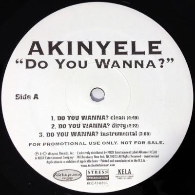 Akinyele - Do You Wanna?