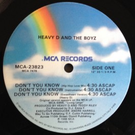Heavy D. & The Boyz - Don't You Know / Moneyearnin' Mount Vernon
